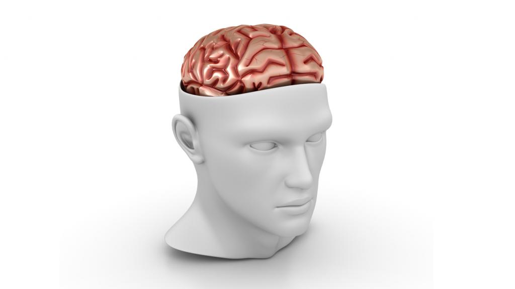 Como a neurociência interfere no aprendizado de uma nova língua?